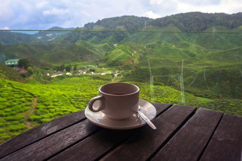 Tassee kaffee landschaft
