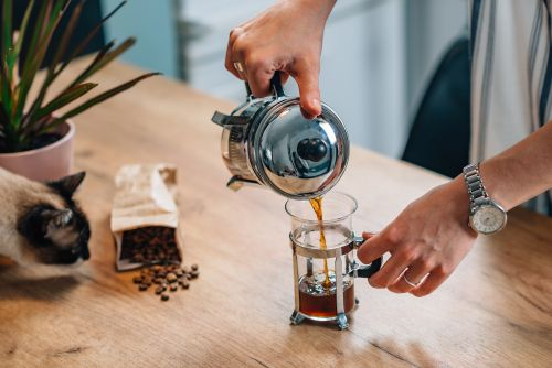 french press kaffee test bild
